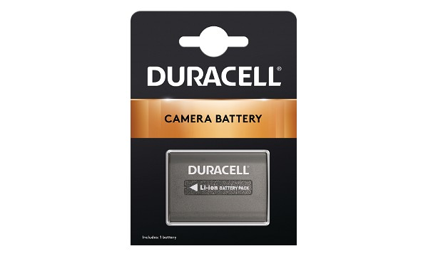 HDR-XR160 Battery (2 Cells)